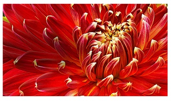 کیفیت تصویر فول اچ دی تلویزیون ال جی lm6300 بانه 24
