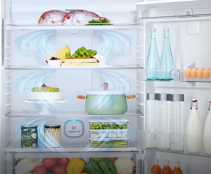 یخچال - یخچال فریزر - ال جی - lg - بانه  baneh24 - خرید - قیمت - بانه کالا